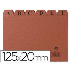 INDICE FICHERO CARTON -N. 4 -TAMA¾O 125X20
